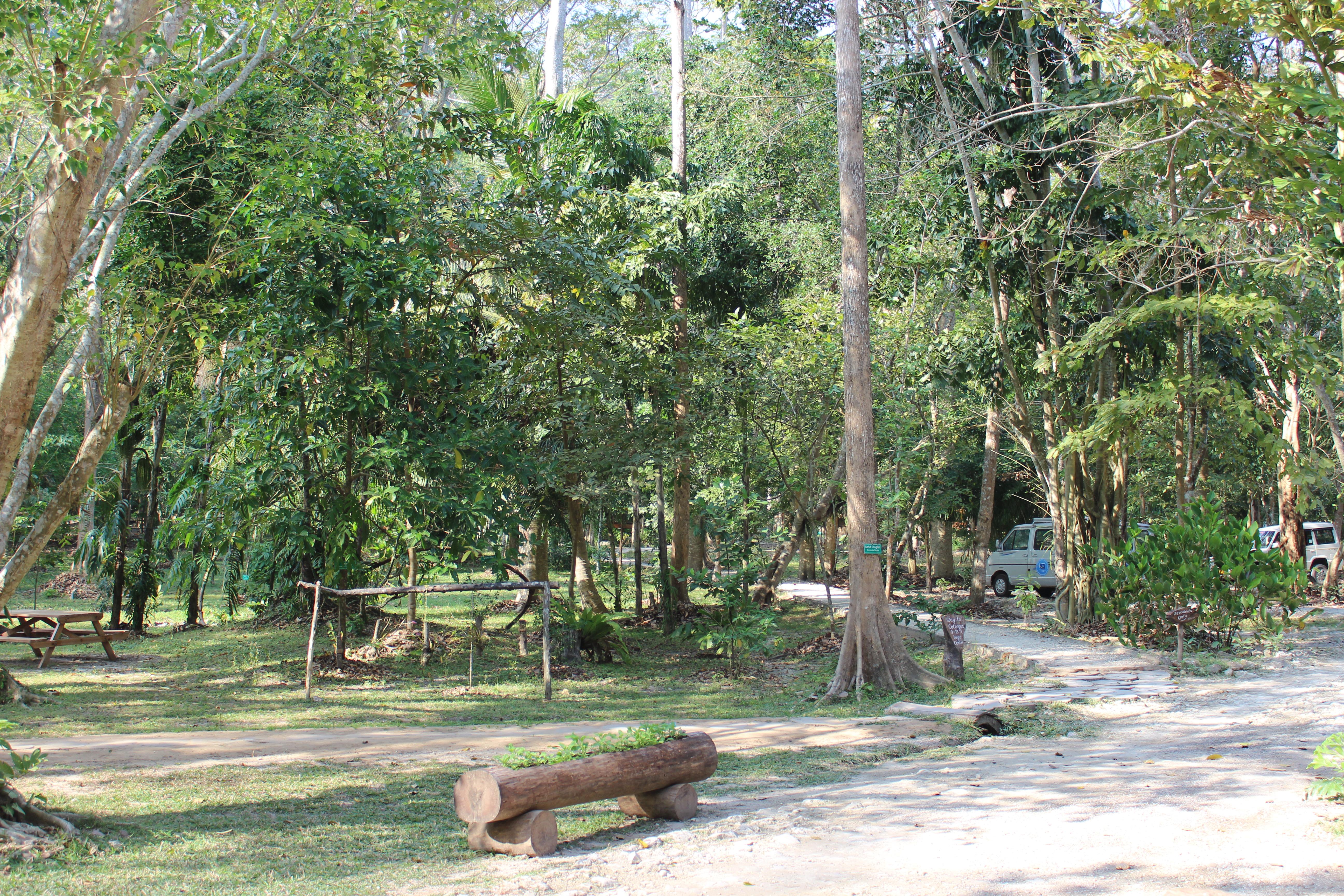 Outside area